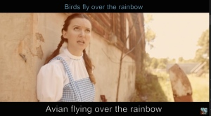 Wizard of Oz avian flying over the rainbow